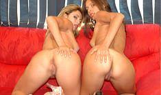 Lésbicas Morgana Dark e  Bianca Mello se beijam e se chupam deliciosamente